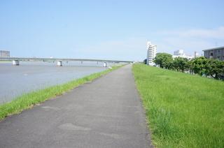 大淀川 側道2.JPG